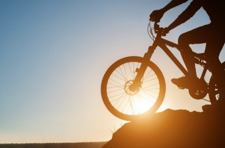 Mountain bike or road bike? Which one to choose